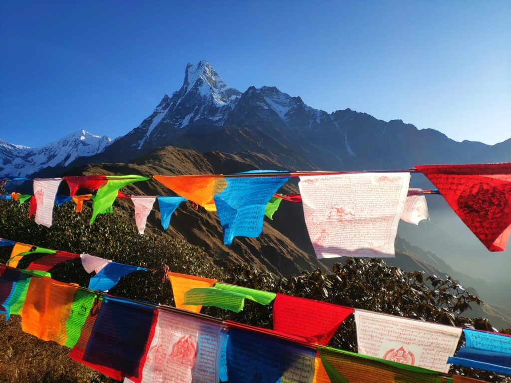 Assorted-Color Buntings On Mountains During Daytime